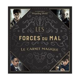 Carnet Harry Potter Les forces du Mal