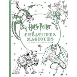 Livre de coloriage Harry Potter